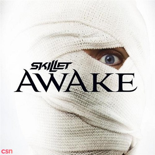 skillet monster mp3 free download 320kbps