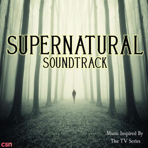 The TV Soundtrack Band