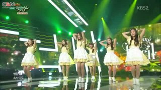 Dream Candy (Music Bank Debut Stage 150828) - April