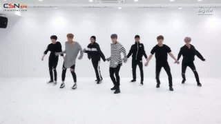 Blood Sweat & Tears (Dance Practice) - BTS