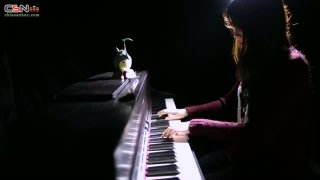 Path Of The Wind (My Neighbor Totoro OST) (Piano Version) - An Coong