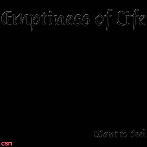Emptiness Of Life