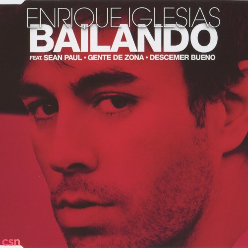 Bailando (Spanish Version)