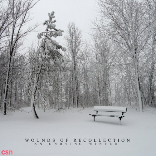 Wounds Of Recollection