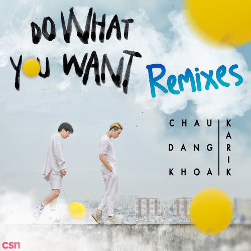 Do What You Want (QMX Mix)