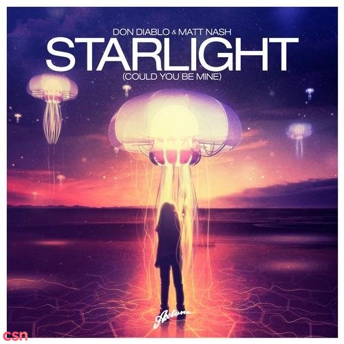 Starlight (Could You Be Mine) (Extended Mix)