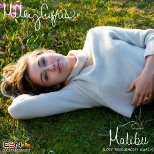 Malibu (Lost Frequencies Remix)