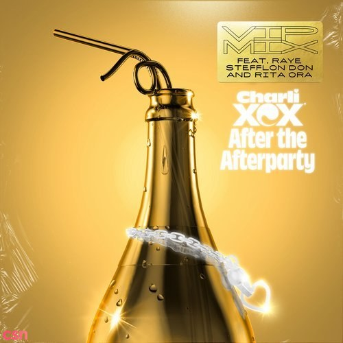 After The Afterparty (VIP Mix)