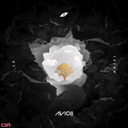 So Much Better (Avicii Remix)