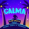 Calma (Alan Walker Remix)