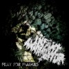 Pray For Plagues (Cover)